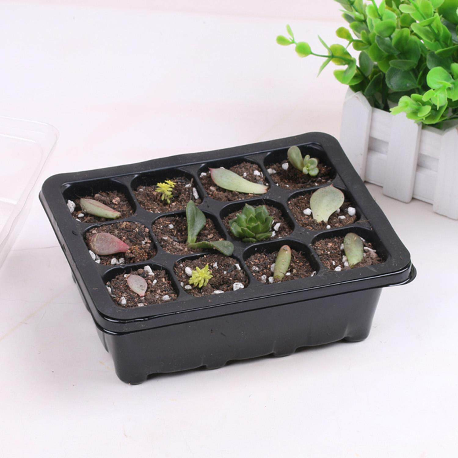 Vococal  6 Set 18.7x14.5x11cm 12-Cell Seedling Seed Starter Tray Kit for Garden Greenhouse Succulent Wheatgrass Microgreens