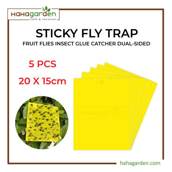 5pcs Sticky Fly Trap Paper Yellow Traps Fruit Flies Insect Glue Catcher Dual-Sided 20 x 15cm