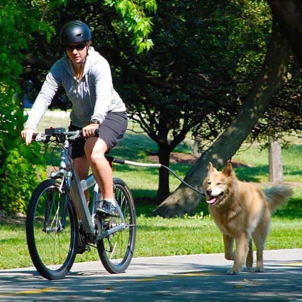 Dây Đai Kéo Xe Đạp Nylon Đàn Hồi Cho Chó Con Chó Dây Xích Xe Đạp Tập Tin Đính Kèm, Dụng Cụ Giữ Khoảng Cách Chạy Bộ Chạy Bộ Cho Thú Cưng Leas Thú Cưng Rảnh Tay