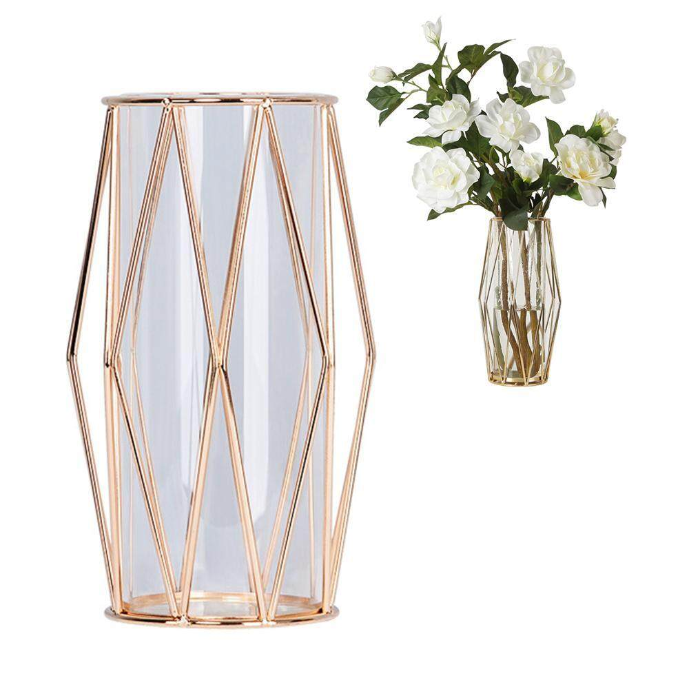 G&B Good Breeze Nordic Iron Holder Vase, Gold Glass Planter Hydroponic Container Flower Pot