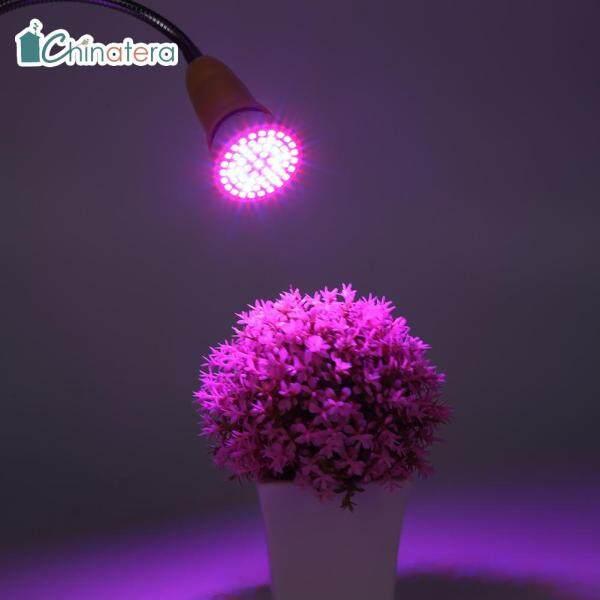 Đèn Trồng Cây Chinatera E27 60/126/200/260LED, Bóng Đèn LED Trồng Cây Trong Nhà, Dùng Để Trồng Cây Giống Trong Nhà