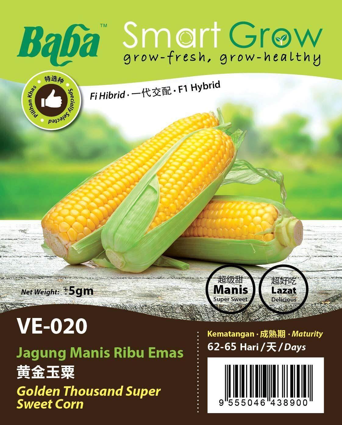 Baba Smart Grow - Golden Thousand Super Sweet Corn 黄金玉米