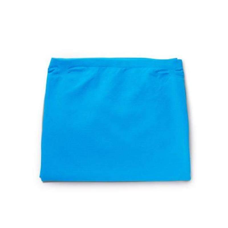 Blue Air air purifier Blue Pure 231 pre-filter blue 103997 Singapore