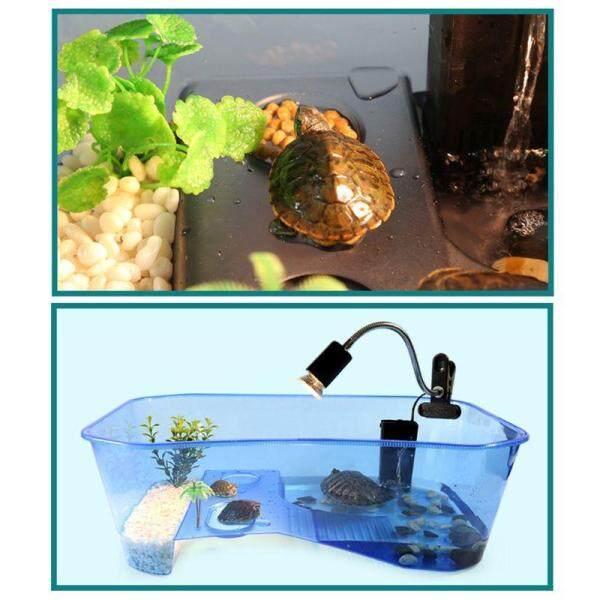 Hộp nuôi bò sát cho rùa với Basking Ramp bể cá công cụ nuôi thức ăn 2 kích thước
