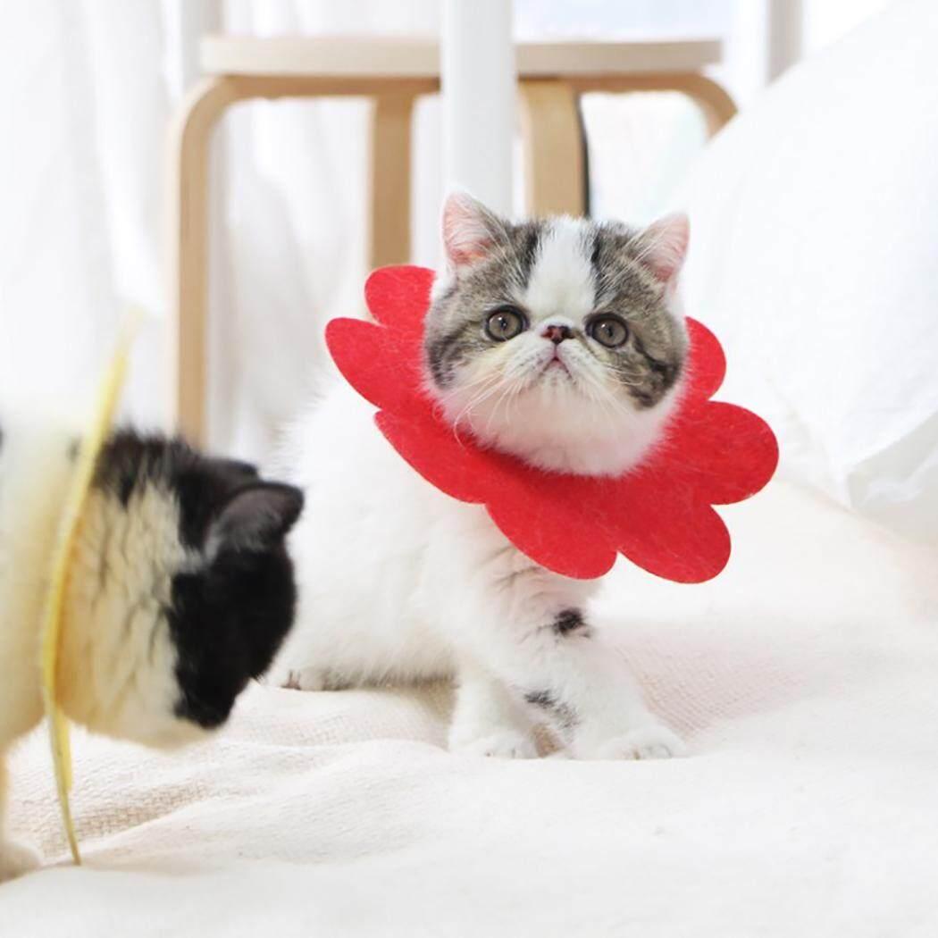 Thú Cưng Phục Hồi Cổ Dễ Thương Hình Hoa Cát Phục Hồi Cổ Nơ Đeo Cổ cho Mèo Con 12