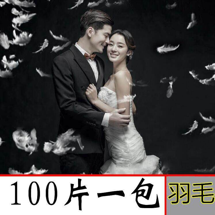 White Feather New Style Studio Wedding Dress Photographic Prop Children Photo Taking Creative Photo Exterior Filming a Package 100 Pieces