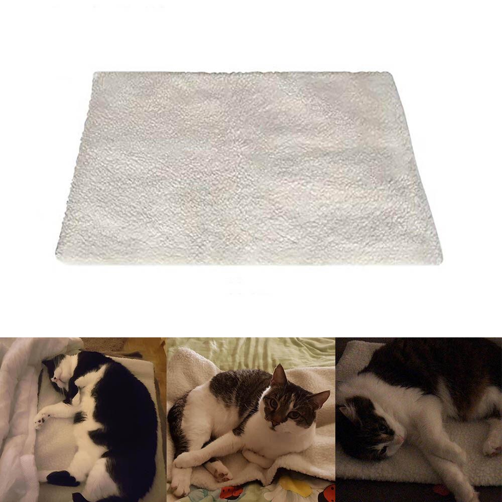 Cao Cấp Tự Làm Nóng Chăn Cho Chó Mèo Sáng Tạo Thân Thiện Với Môi Trường Nóng Mèo Chăn