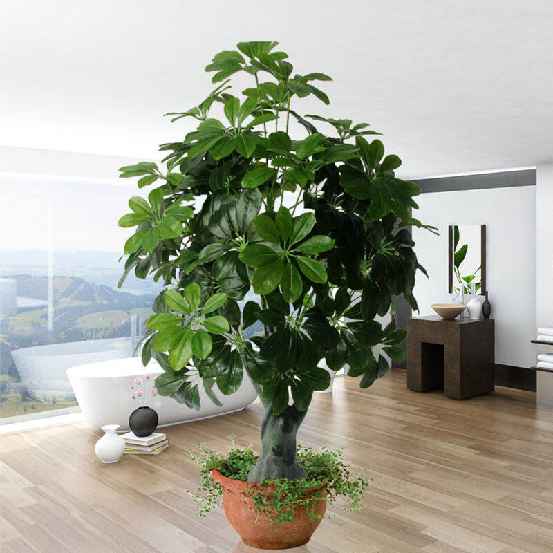Simulation Money Tree Simulation Plant Potted Office Living Room Floor Decoration Tree Money String