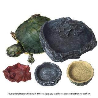 Nồi Đa Năng, Nhựa Thằn Lằn Gia Đình Dụng Cụ Thú Cưng Tinh Tế Thiết Thực Tinh Tế Hình Con Tắc Kè Rùa Dễ Vệ Sinh Bát Nước Cho Bò Sát thumbnail