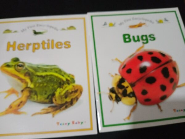 [Used] English Story Book - My First Encyclopedia Bugs , Herptiles (2 book) Malaysia