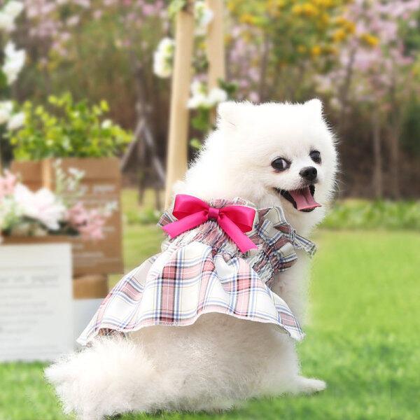 Váy Thú Cưng Meow Go Váy Xếp Ly Lưới Cho Thú Cưng Mùa Hè Phong Cách Hàn Quốc Váy Cho Chó Con Mèo Con Mèo Con Mèo Con Quần Áo Váy Công Chúa Tiệc Cưới Đồ Dùng Cho Thú Cưng