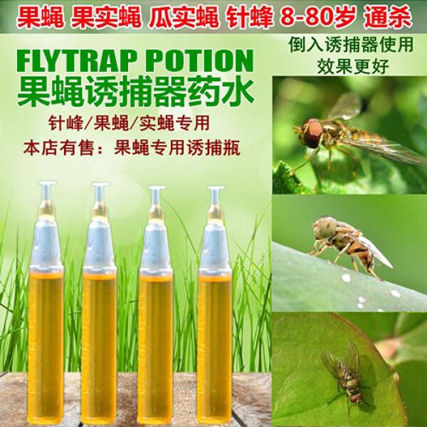 2ML YELLOW ATTRACTANT FLYTRAP POTION 623 黄诱剂果蝇诱捕器药水