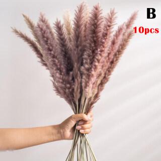 Hoa Khô Bó Hoa Hoa Khô Tự Nhiên, Bó Hoa Sậy Flores Pampas Wheats Bộ Tai, Để Trang Trí Nhà Văn Phòng thumbnail