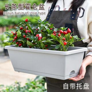 Chậu Hoa Nhựa RET, Cây Ban Công Gia Đình, Rau Và Hoa Cây Hình Chữ Nhật Lớn Chậu Cây Rãnh Dành Cho Gia Đình thumbnail