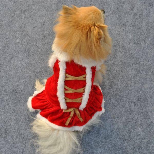 Jianiia28 Chúc Mừng Năm Mới Phong Cách Giáng Sinh Nữ Váy Chó Vàng NHUNG XÙ Lông Ruy Băng Cổ Áo Váy Đỏ Cho Shih Tzu Teddy Thú Cưng Nhỏ
