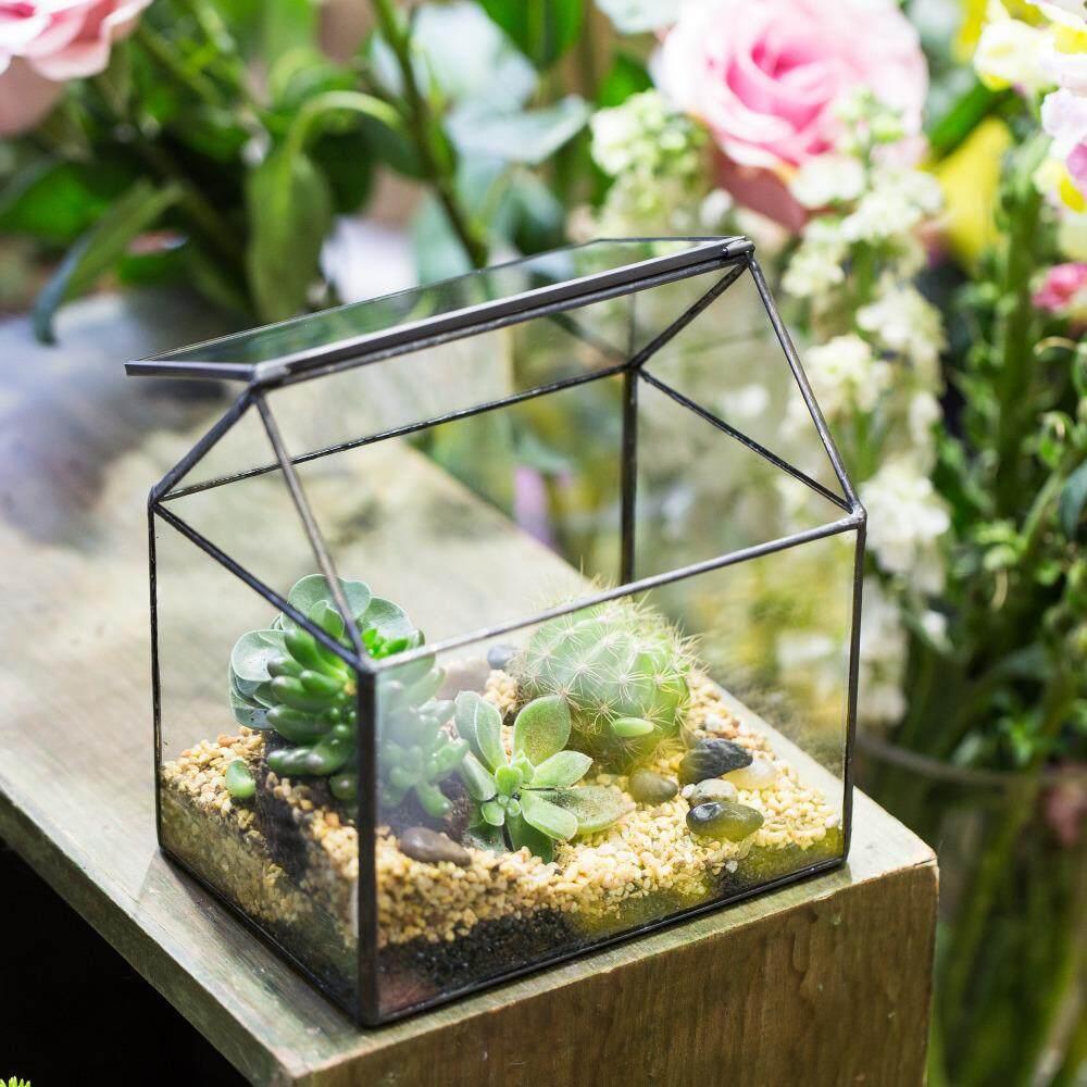 Geometric Fern Moss Succulent Glass Terrarium Plant Pot Box Display Flower Vase
