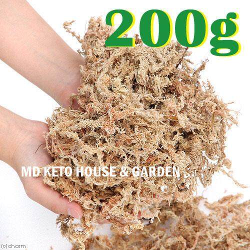 A++ 200g Top Quality Golden Chile Chilean Sphagnum Moss For Bonsai, Cattleya Phalaenopsis Dendrobium Orchid By Md Home & Garden.