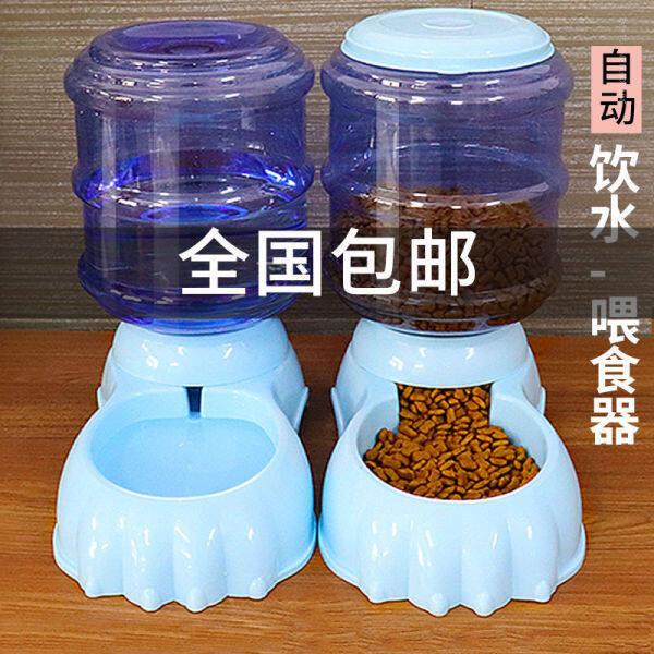 Bát Đựng Nước Cho Chó, Bát Đựng Cơm Tự Động Cho Chó Teddy, Bình Đựng Nước Cho Mèo 80%