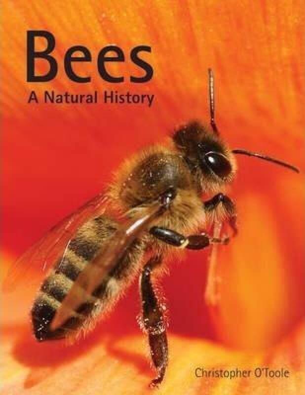 Bees: A Natural History Malaysia