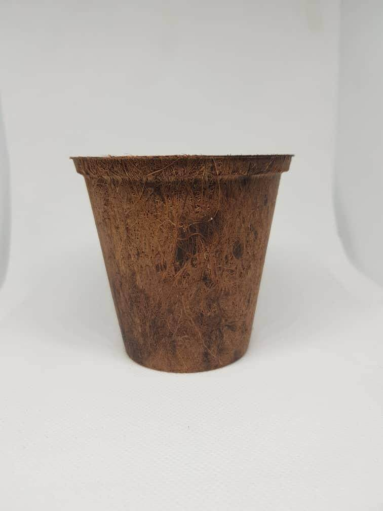 Minimalistic Environment Friendly Biodegradable Sustainable Coconut/Coco Coir Planting Pot [RC001] [8.5x8x5.5cm] [3inch]