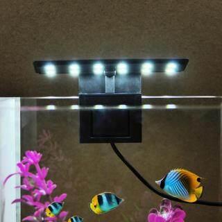 Hàng Có Sẵn Đèn Hồ Cá AC220V 5W 12 LED Đèn Bình Cá Phụ Kiện Hồ Cá Cầm Tay Ánh Sáng Trắng thumbnail