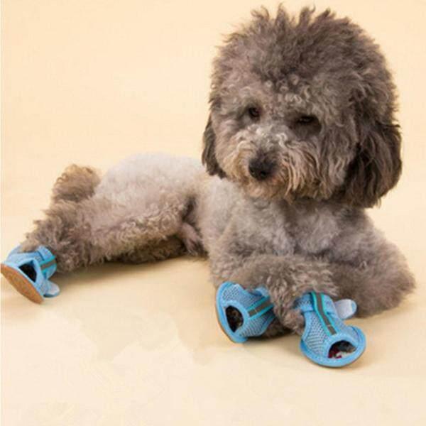 【Giày thời trang cho chó mùa hè Giày lưới thoáng khí Dép cho chó Đồ dùng cho thú cưng chống nóng chân Dành cho chó và mèo Cửa hàng đồ dùng cho thú cưng bán phụ kiện Màu xanh dương