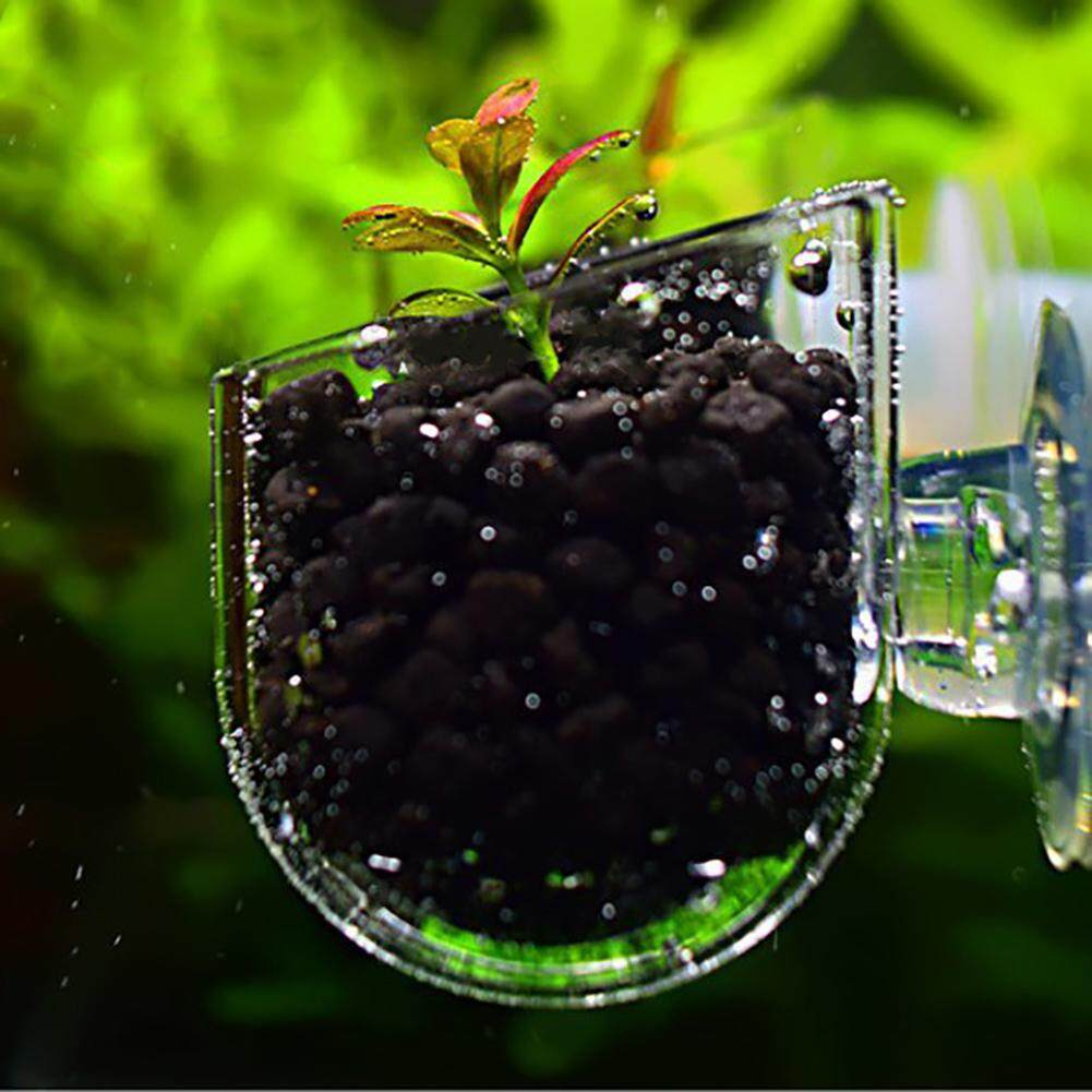 Westcoolpet Creative Aquarium Fish Tank Glass Plant Cup Red Worm Feeding  Container Holder