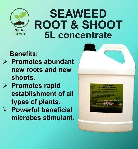 Seaweed Fertilizer Root & Shoot for Plants Seaweed Root & Shoot concentrated fertilizer advanced technology 5 litre