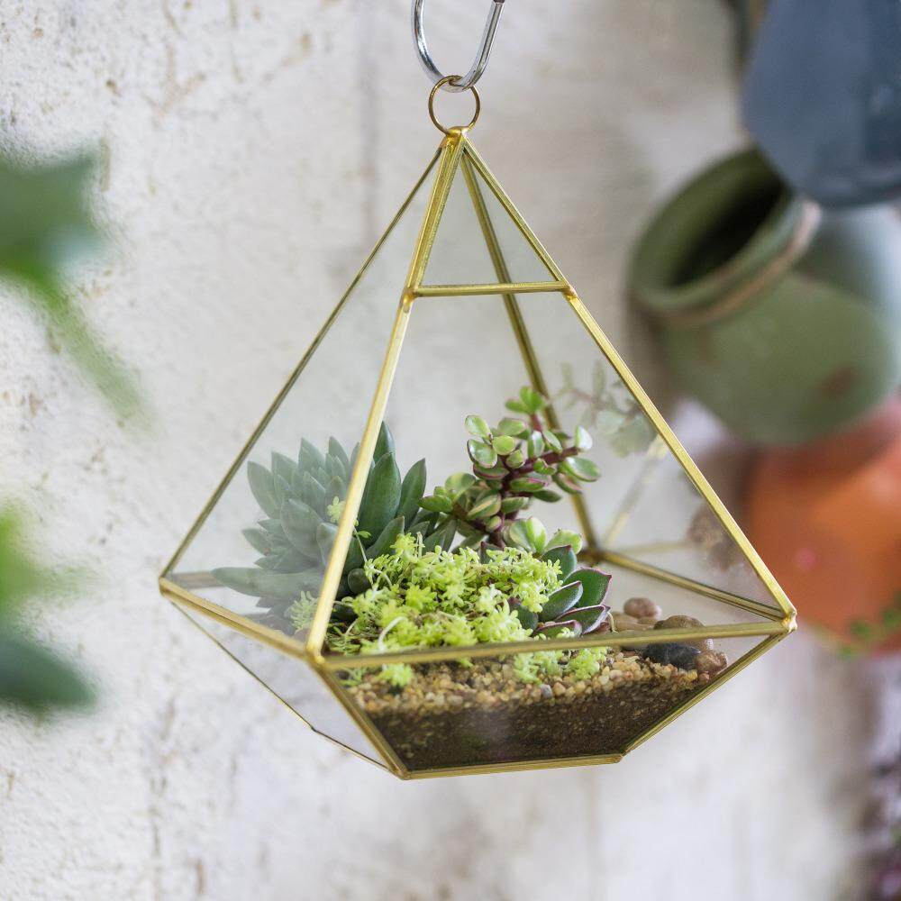 Fityle Mini Tabletop Display Succulent Fern Moss Flower Pot Air Plant Planter Box Geometric Glass Terrarium Bonsai