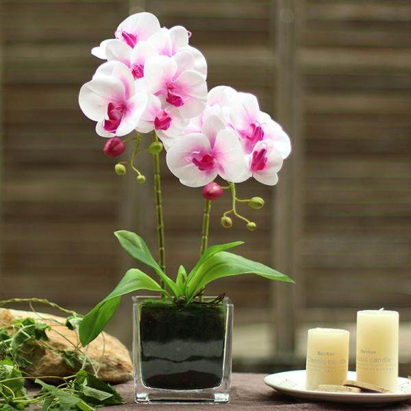 Phalaenopsis Home Living Room Decoration Artificial Flower dining table Ceremony Party Orchid Set + Vase