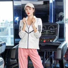 Bộ Đồ Thể Thao Dream-S Cho Nữ, Bộ Đồ Tập Yoga, Chạy Bộ, Tập Gym, Nhanh Khô, Trang Phục Thể Thao