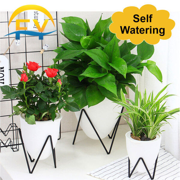 FY Self Watering Absorb Flower Plant Lazy Pot Iron Art Egg-Shaped