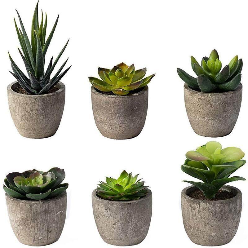 6 Pots Small Artificial Succulent Plants Mini Fake Faux Pot For Shelf Kitchen Counter Office Decor Tiny Miniature Desk Plant Succulents Decoration Plastic Cactus Aloe