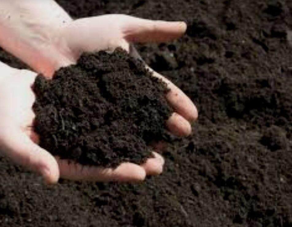 Garden Black Soil / Tanah Hitam 3kg