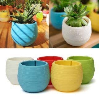 5 Chiếc Chậu Hoa Nhựa Tròn Trồng Cây Trong Vườn Trang Trí Văn Phòng Trang Trí Chậu Hoa Dễ Thương thumbnail