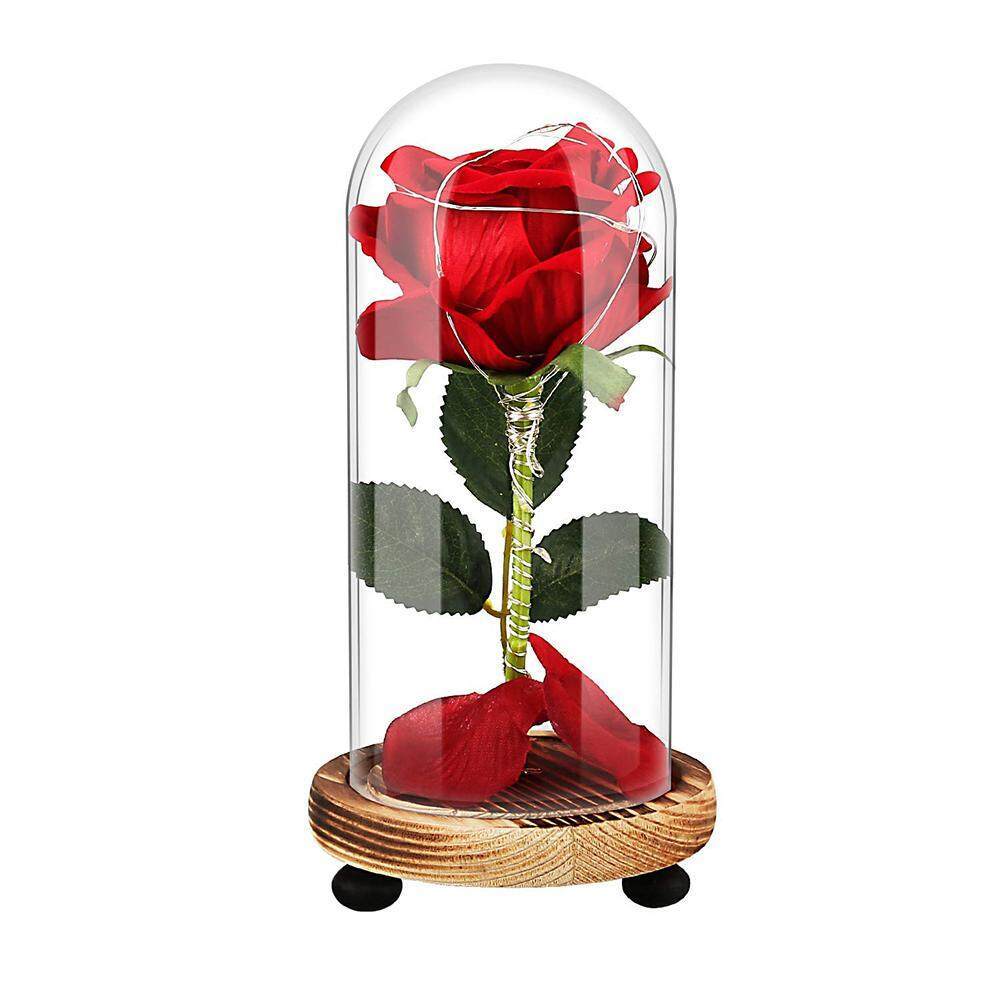 Laputa USB Rechargeable LED Preserved Dry Rose Flower in Glass Cover Mothers Day Gift