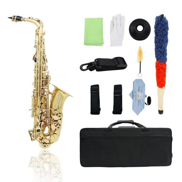 Brass Eb Alto Saxophone Sax Lacquered Gold Woodwind Instrument with Carry Case Gloves Cleaning Cloth Brush Sax Strap Mute Mouthpiece Brush Malaysia