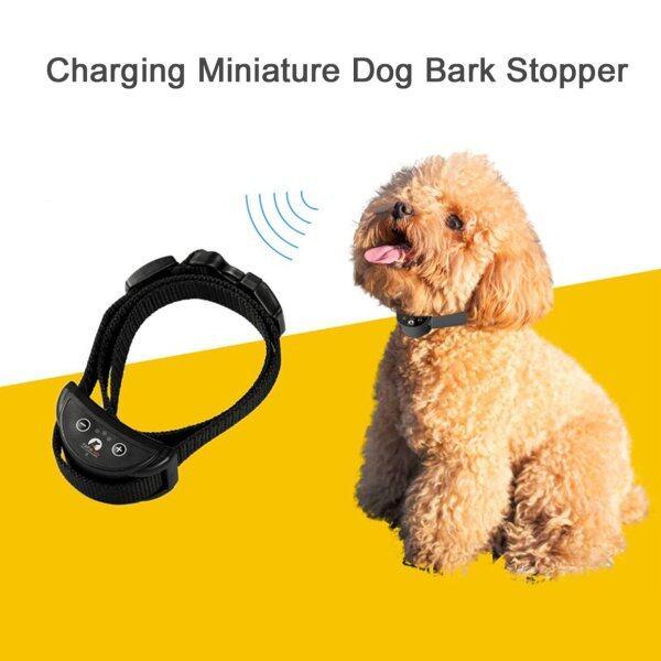 Paipaipaitek PD258-S Vòng Cổ Huấn Luyện Chó Điều Chỉnh Được, Vòng Cổ Chống Sủa Máy Huấn Luyện Chó Sạc USB