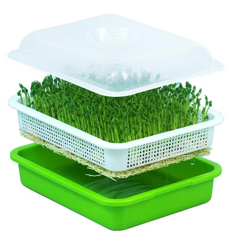 Seed Sprouter Tray BPA Free PP Soilless Bean Sprout Grower Seedlings Germination Tray Sprouting Kit with Lid