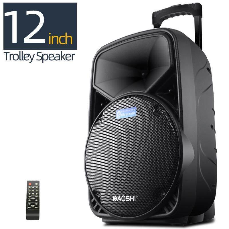 500W Portable Trolley Speaker Karaoke +2 Mic(Choose) Outdoor Bluetooth PA System Street Performances Square Dance Move Retractable Handle, Wheels,USB Audio Input