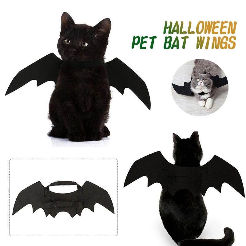 Cánh Dơi Đầm Cho Thú Cưng Cánh Mèo Trang Phục Sáng Tạo Màu Đen Dễ Thương Halloween Suppiles Đạo Cụ
