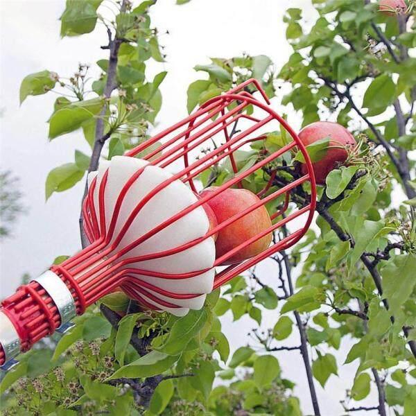 Công Cụ Hái Trái Cây Công Cụ Hái Cây Với Giỏ Xoắn Cây Trái Cây Công Cụ Thu Hoạch Dụng Cụ Làm Vườn