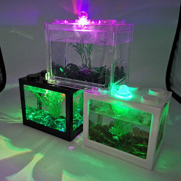 Sáng tạo mini bể cá nhỏ Ribbon đèn bảng Top Glass container cho cá nhỏ tôm