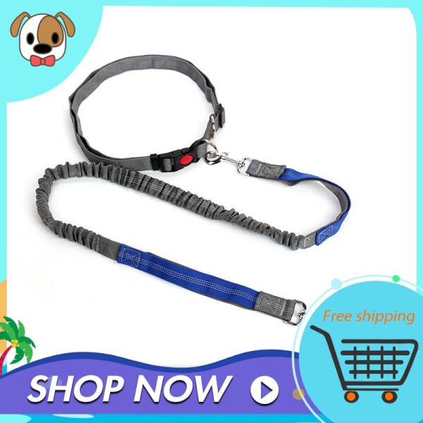 Dây Xích Chó Rảnh Tay Có Thể Điều Chỉnh Vành Đai Thắt Lưng Dây Dắt Chó Chạy Bộ Đi Bộ Đường Dài Dây Dắt Thú Cưng Đàn Hồi Bungee