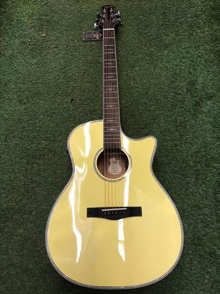 SQOE XLDC - YN 40 Inch Semi Acoustic Guitar with Fishman Pickup Malaysia