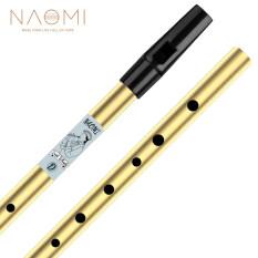 Naomi 6 lỗ tin còi truyền thống Ailen Penny còi Chất liệu đồng thau nhạc cụ cho người mới bắt đầu, Key of D