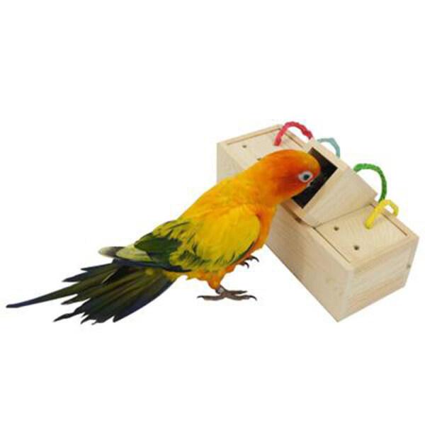 Khối, Đồ Chơi Giáo Dục, Parakeet Vẹt Sáng Tạo Tìm Kiếm Trí Thông Minh Bằng Gỗ Cho Chim Đồ Chơi Đào Tạo Cockatiel Trung Chuyển Đổi Màu