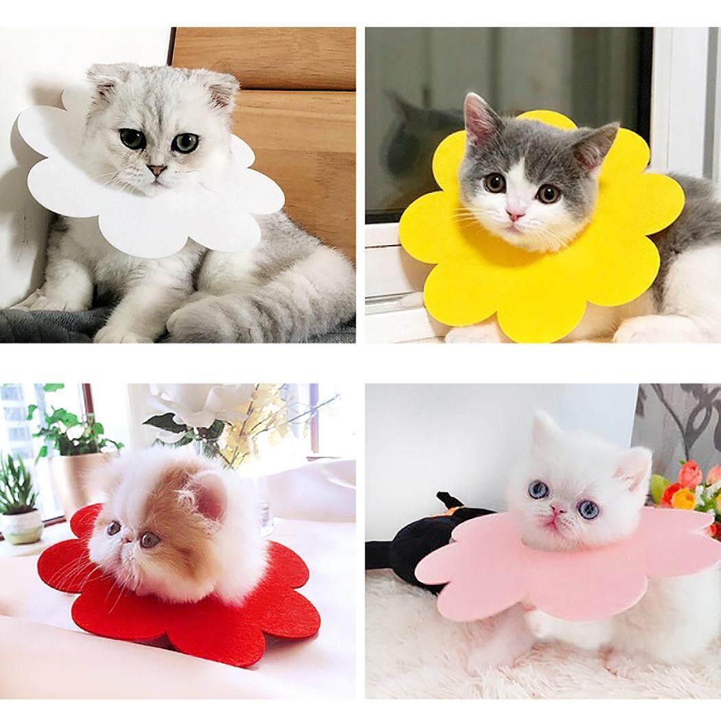 Thú Cưng Phục Hồi Cổ Dễ Thương Hình Hoa Cát Phục Hồi Cổ Nơ Đeo Cổ cho Mèo Con 13