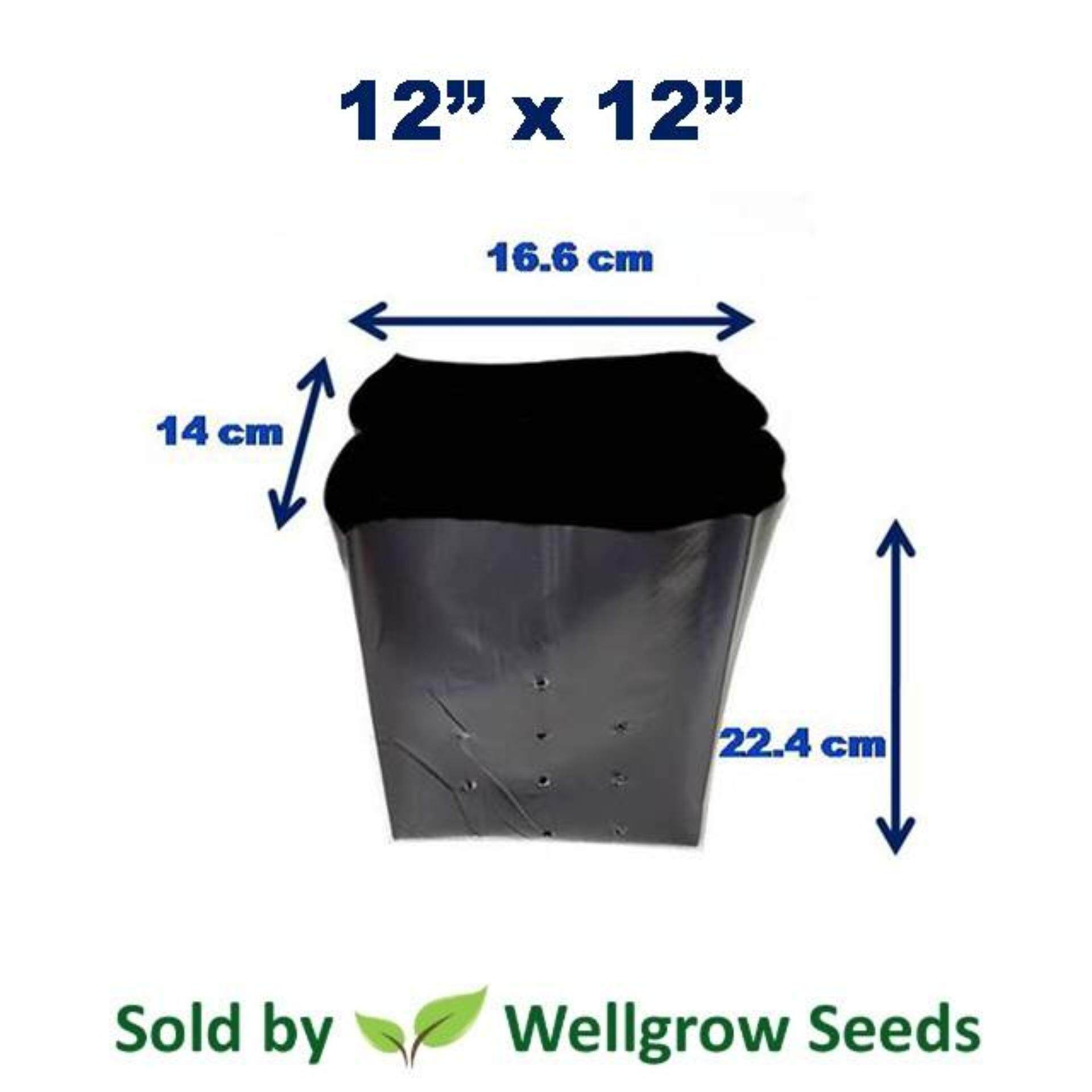 Polybag 12 x 12 (1kg) ≈30 pcs (Nursery Growing Bag Thick UV)
