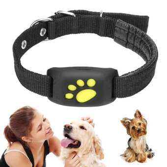 M_home กันน้ำได้ฟังเครื่องติดตามสัตว์เลี้ยง GPS ปลอกคาสุนัขแมว GPS Callback Function USB ชาร์จ GPS สำหรับ Universal สุนัข-